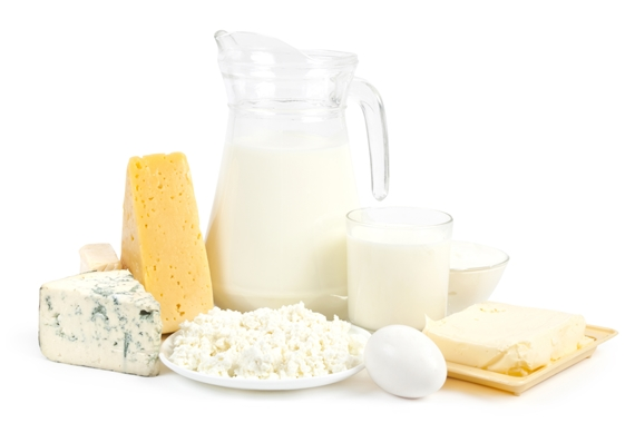 Food Group - Cheese, Milk and Dairy Products